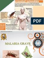 malaria grave.ppt