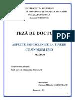 Rezumat Teza Varasteanu