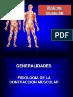 El Sistema Muscular (1)