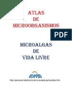 Atlas de Microorganismo2