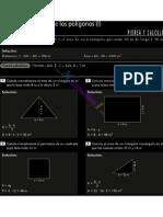 4_areas y Perimetros f