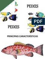 peixes1