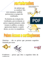 Biologia Vertebrados 091101130659 Phpapp01