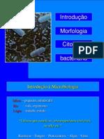 MORFOLOGIA+E+CITOLOGIA+BACTERIANA