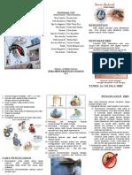 [Dho] Leaflet DBD