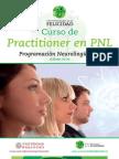 00000.Folleto Practitioner en PNL 2014