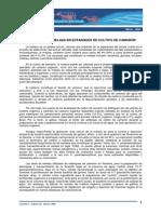 Biofloc_Utilizacion de Melaza en Estanques de Cultivo de Camaron