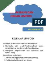 Jar Limfoid (Bms III)