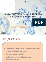 Trichoderma Spp Ppt