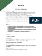 actividad enzimatica