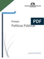 Ensayo_PP