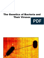 The Genetics of Bacteria and Their Viruses