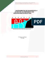 Procesos e Instrumentos de Diagnostico y Evaluación de Las Personas Con Discapacidad Intelectual