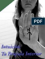Reporte Intuicion 2014