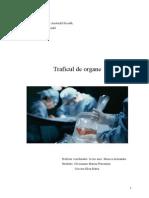 Traficul de Organe-referat