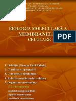 structura_membranelor
