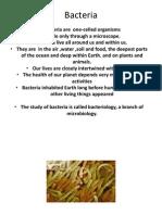 Study of Bacteria