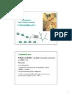 101950_carbohidratos2014IQ.pdf