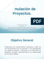 18, Formulacion de Proyectos Sociales