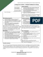feedback essay voorbeeld