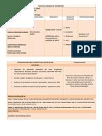 plandecuidadosdeenfermeradxx-130702003753-phpapp02