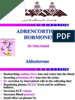 Adrenal 3