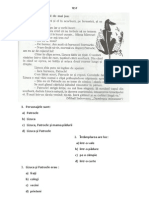 Evaluare Nationala Cls II