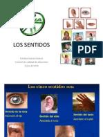 LOS SENTIDOS.pptx