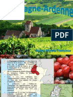 Champagne Ardenne proiect franceza