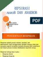 Respirasi Aerob Dan Anaerob