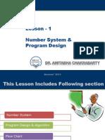 Number System & Program Design