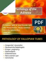 Pathology of the Adnexa