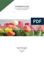 Simposio u Chile Sobre Tulipan_ Cultivo