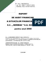 Raport Audit 2008