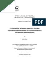 2009. Tesis Michel Saini. Contexto Político Inclusion SE en Sector Hidroeléctrico