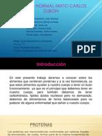 Presentacion de Paradigmas Yu
