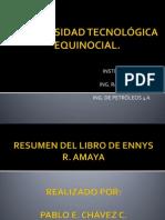 Resumen Libro Amaya
