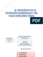 Control Fisiológico de La Filtración Glomerular y Del