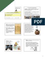 ARA 01 2009 - NR 1 - Disposições Gerais e NR 2 Inspeção Prev [Modo de Compatibilidade]
