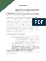 RESUMEN PETROLOGIA.docx