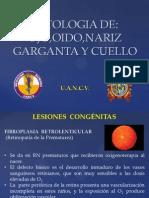 Patologia de Ojo,Oido,Nariz,Garganta y Cuello