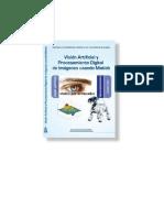 Vision Artificial y Procesamiento Digital de Imagenes Usando Matlab