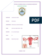 Informe Cancer Uterino