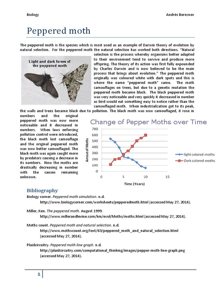 peppered moth worksheet mmosguides. Black Bedroom Furniture Sets. Home Design Ideas