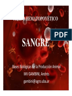 Clase 4 Sangre Comision I