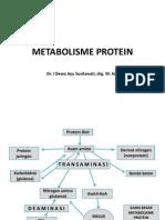 Metabolisme Protein [Autosaved]