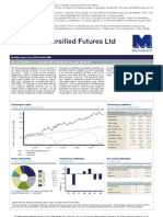 Man AHL Diversified Futures Ltd (the 'Company') Primarily Invests In