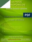 PRIMERA PARTE Cultivos hidropónicos.pptx