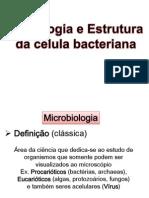 Aula Morfologia Bacteriana