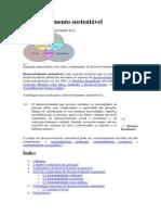 Desenvolvimento sustentável.docx